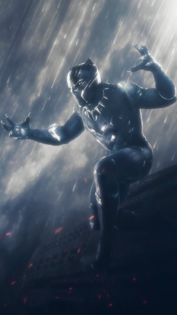 Black Panther Fighting Wallpaper