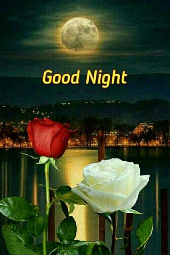good night image in telugu
