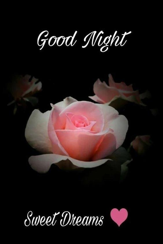 good night image for husband