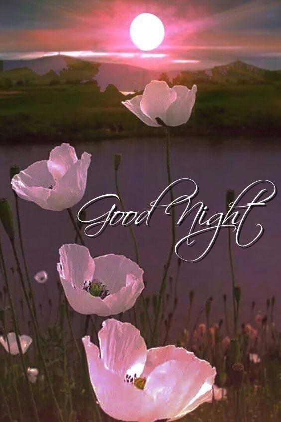 wonderful good night image